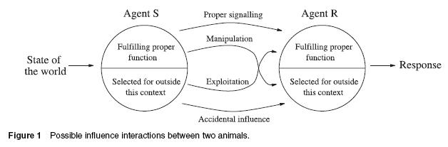 Animal Influences