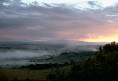 Dawn on Masai Mara