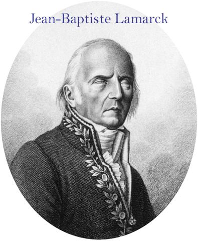 JB Lamarck